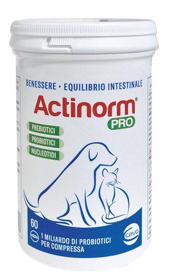 ACTINORM PRO PER CANI/GATTI 60COMPRESSE